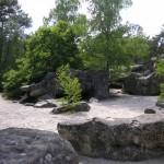 Fontainebleau 2 - Diplodocus (06/2009)