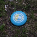 Fontainebleau 2 - Frisbee (06/2009)