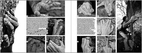Lizenz zum Bouldern - Deine Hände
